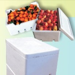 Fruit Box (2)